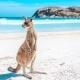 AUSTRALIA /* NUEVA ZELANDA